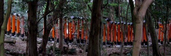 Fushimi Inari-taisha (a shrine).