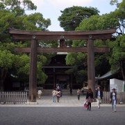 A torii leading to Meiji-jingu (a shrine).